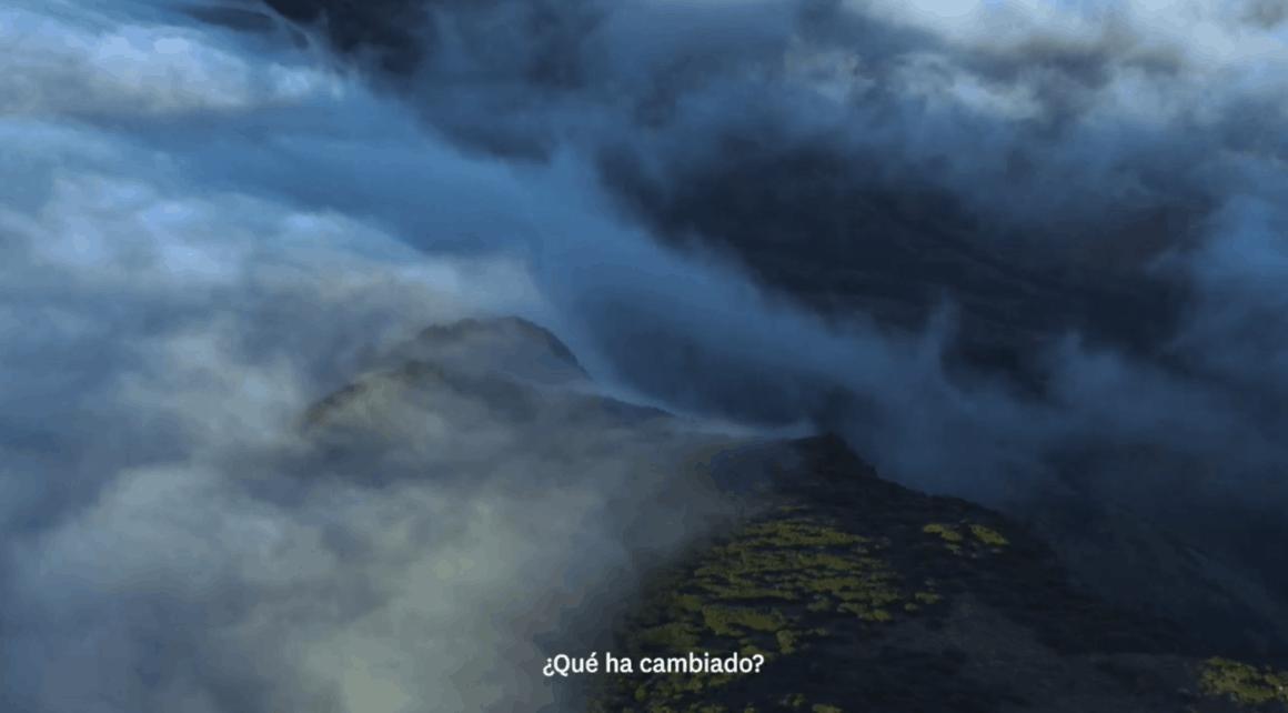 """campaña Un viaje de reflexión"""" nueva zelanda"""
