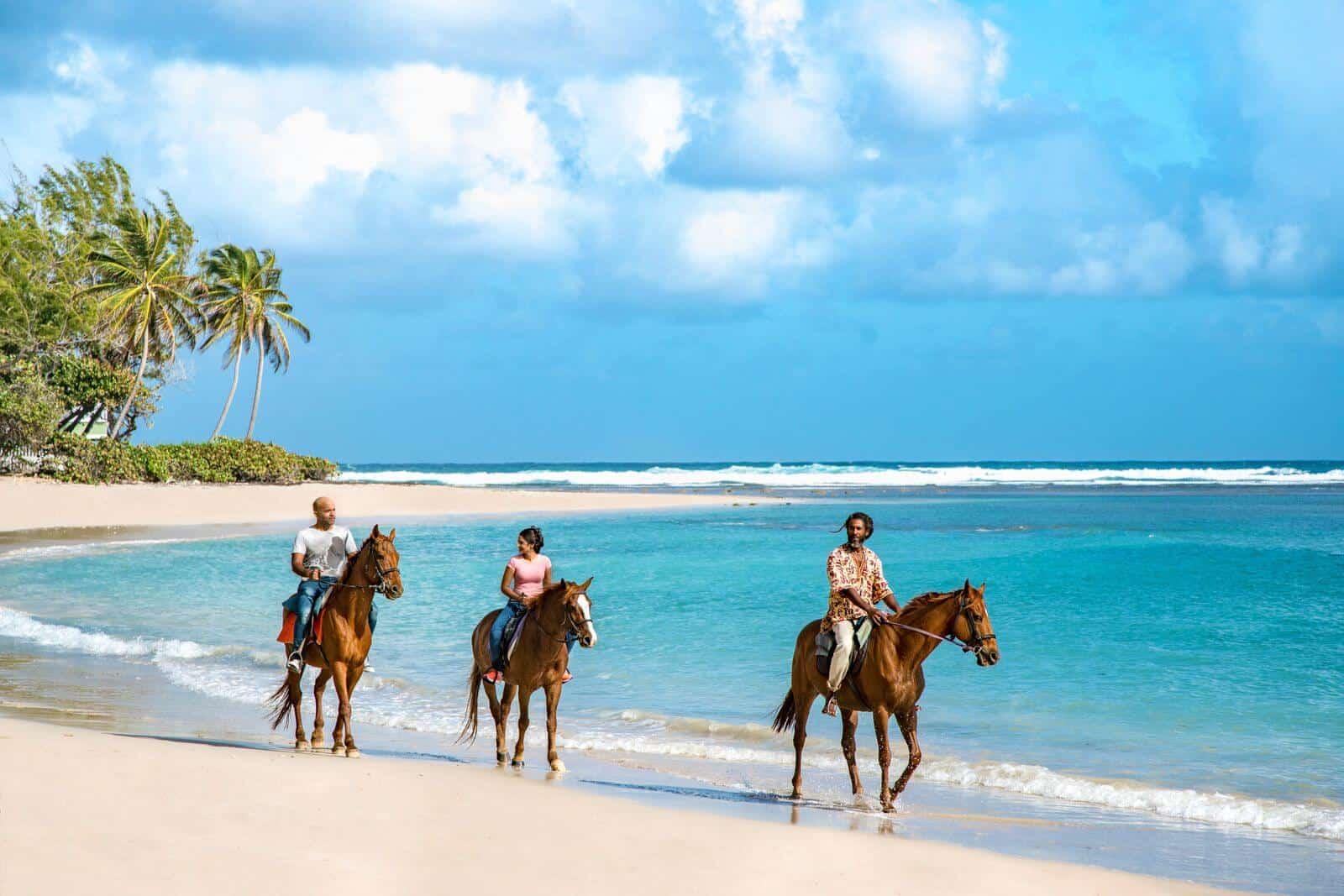 Estímulo y asistencia Cómo actúa Barbados con el sector turístico durante la pandemia de Covid-19 36